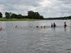 Start zum Elbeschwimmen