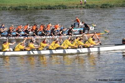 Drachenboot Rennen auf der Elbe