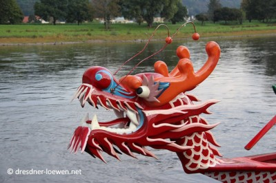 Drachenbootrennen - ©dresdner-loewen.net
